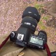SIGMA 50mmF1.4 EX DG HSM+EOS 5D Mk2