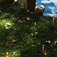 靖国神社 日本庭園