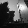 梅雨の中休み-4