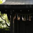 寒川神社−8